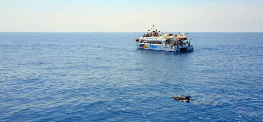 Boot Ausflüge auf Mallorca