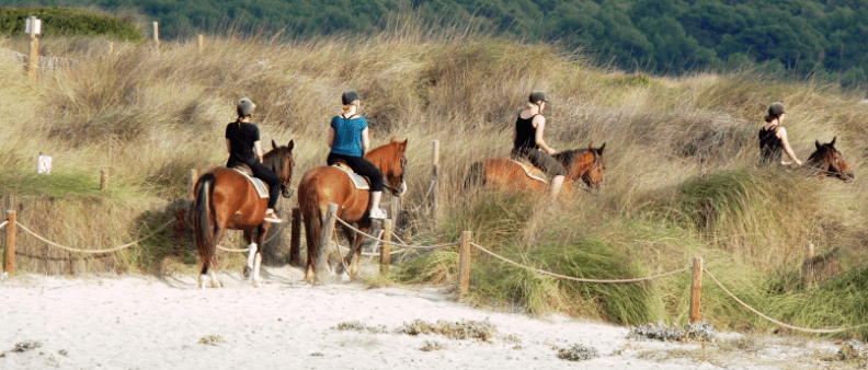 Grupo durante montar caballo en la playa
