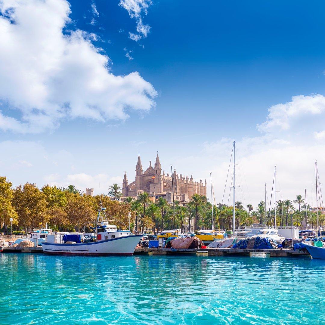 Vista catedral de Palma de Mallorca