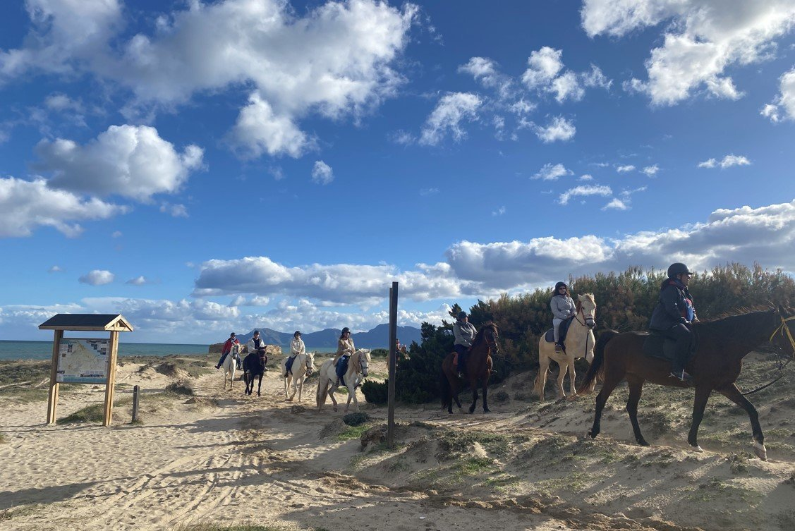 montar a caballo por la playa en Mallorca
