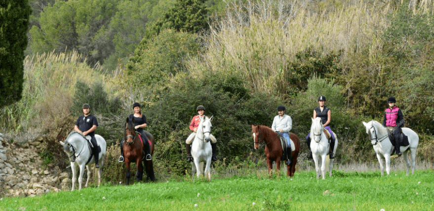 horse riding excursions in Mallorca